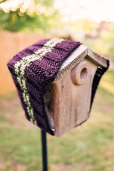 Blue bird nesting box wrapped in a knitted cowl for warmth